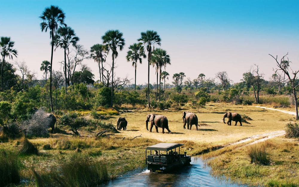 Botswana hotéis e roteiros de viagem