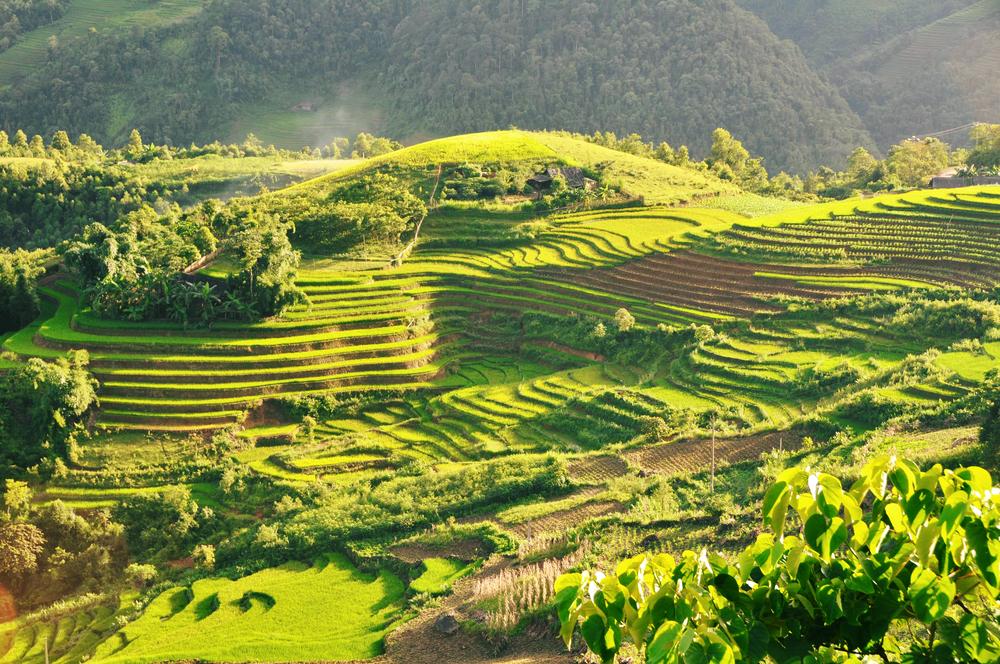 Vietnam hoteis e roteiros de viagem