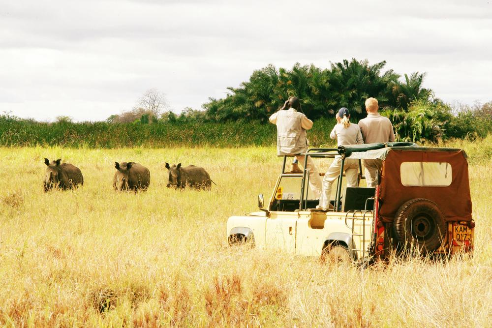 Quenia hoteis, safaris e roteiros de viagem