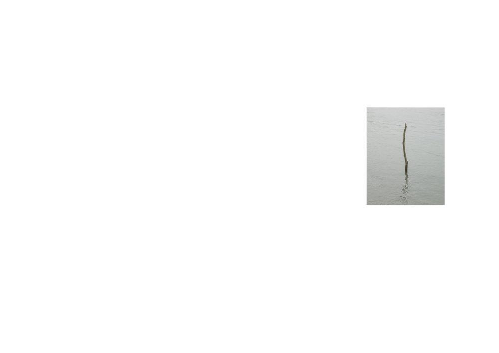 Untitled-1.2.jpg