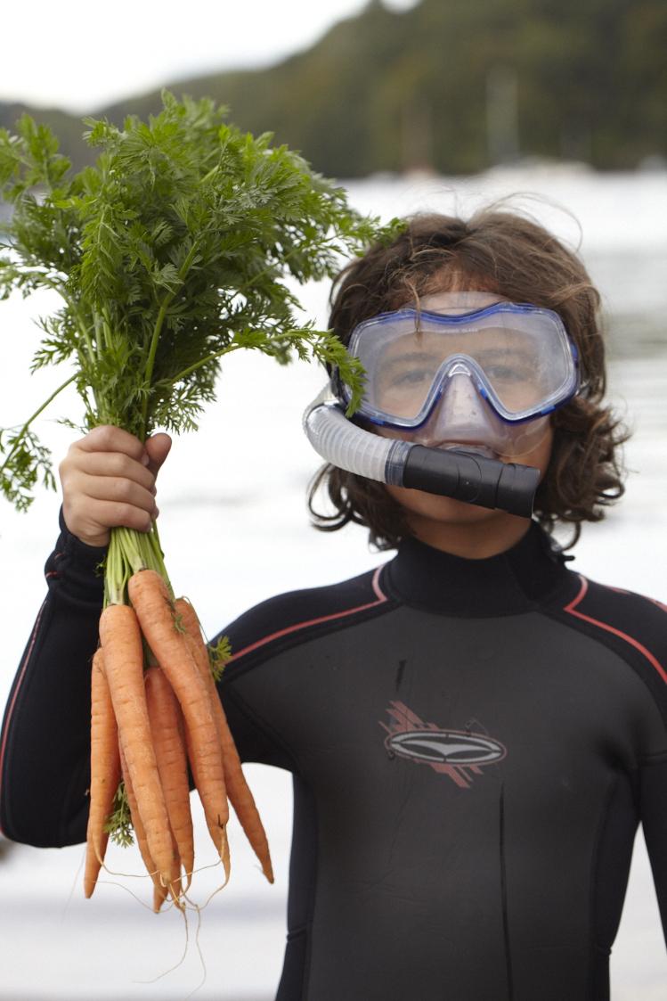 Sea Carrots 0182.jpg