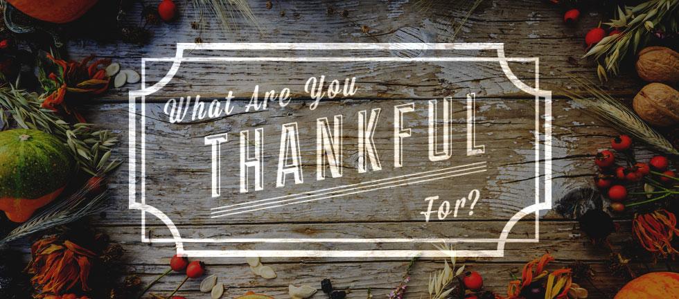 thankfulBlog.jpg