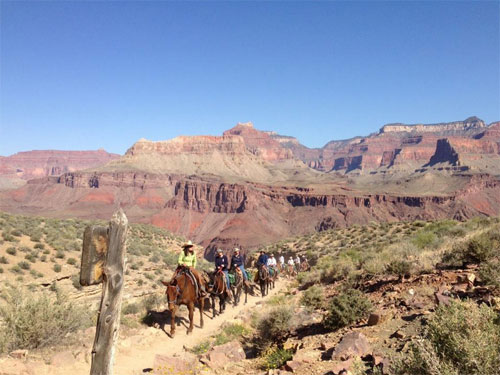 grand-canyon-hike-courage-donkey-trail