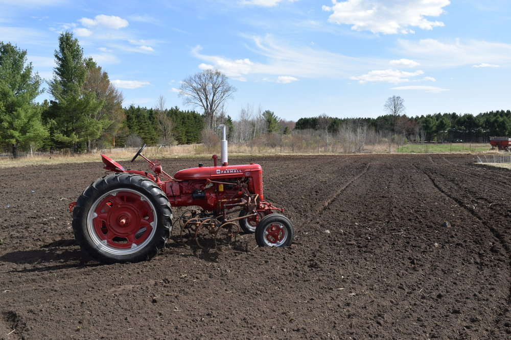 Red tractor in the plowed field.JPG