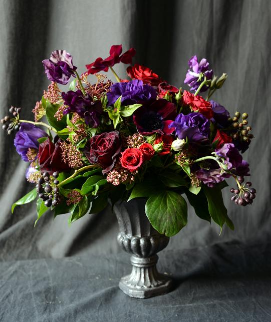 Sullivan-Owen-Valentines-Day-2013-Red-Purple