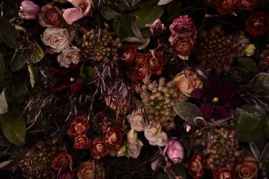 Sullivan_Owen-Philadelphia-Flower-Show-2013-Mauve-2