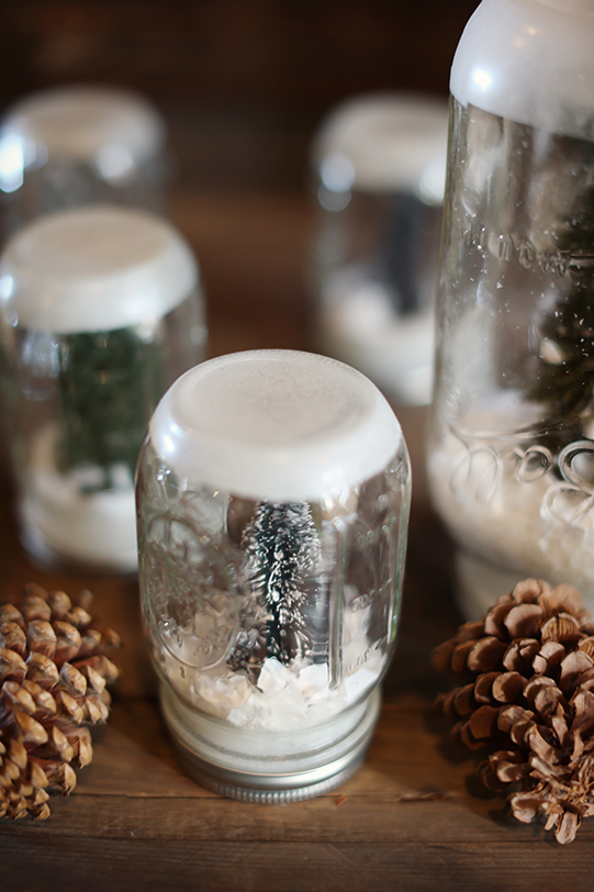 Sullivan-Owen-Alison-Conklin-Terrain-Winter-Wedding-Bottle-Brush-DIY-SnowGlobes