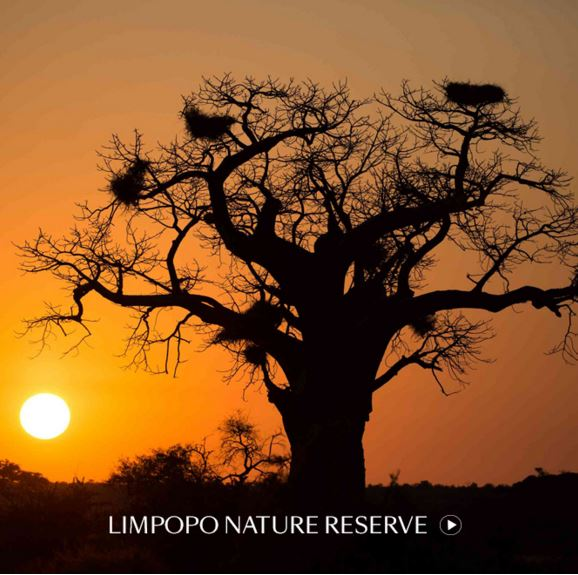 Limpopo Nature Reserve