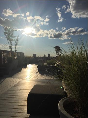 Upper West Side Rooftop Yoga Sunset