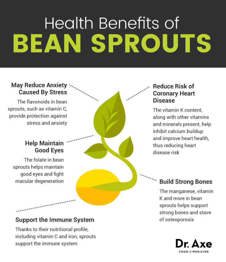 bean sprouts graphic