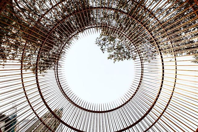 """Mondays are your chance to develop new perspectives for the week ~ looking from inside out Ai Wei Wei's """"Gilded Cage"""" in Central Park."""