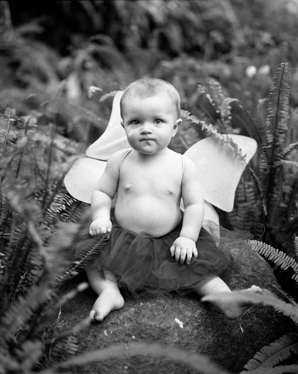 Fina with Wings | San Diego Baby Photography