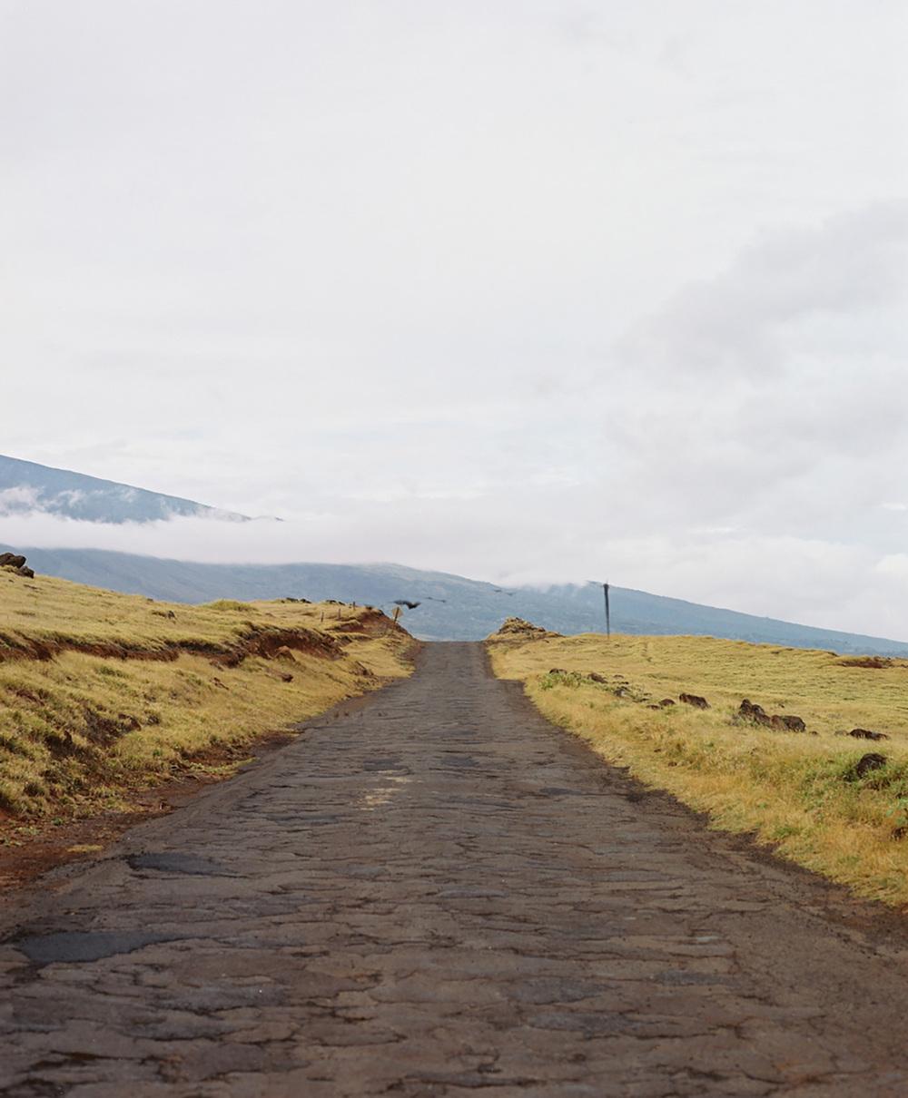 """""""Back Roads"""""""