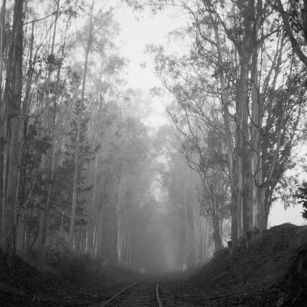 """Blind Road"""