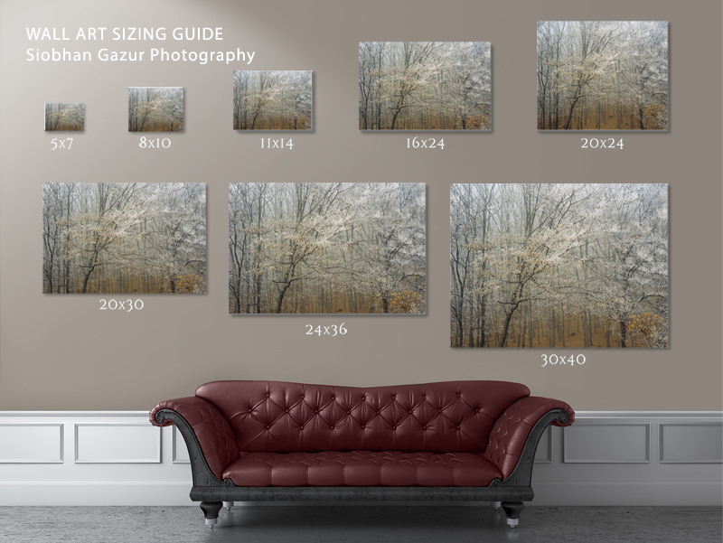 Wall Art Sizing Guide - Siobhan Gazur Photography