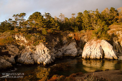 Beach Photography Tips Point Lobos-Carmel-By-The-Sea
