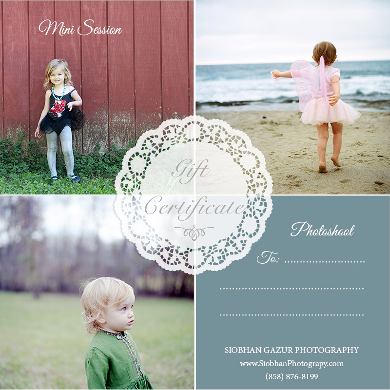 GIVE A PHOTOGRAPHY GIFT CERTIFICATE