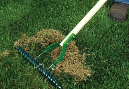 Dead grass, leaves, stems and roots can accumulate and decrease turf health
