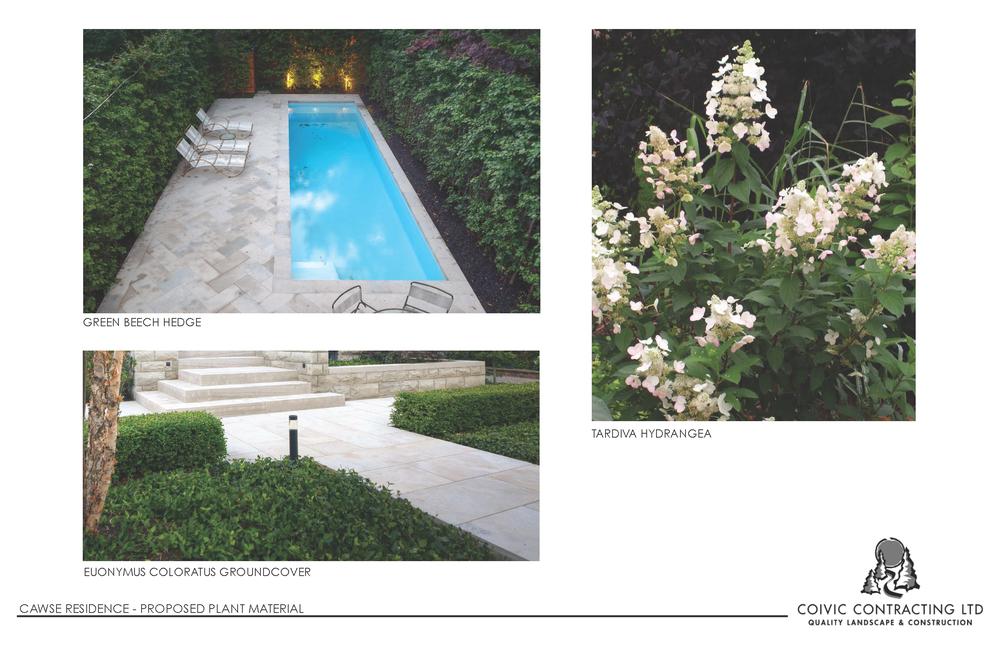 Landacape Designs for 465 Macdonald_Page_5.png