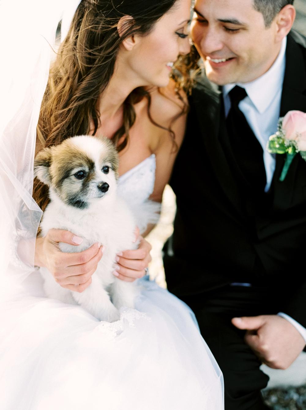 Waterton Wedding Photographers | Mountain Wedding Photography | Calgary Wedding Photographer