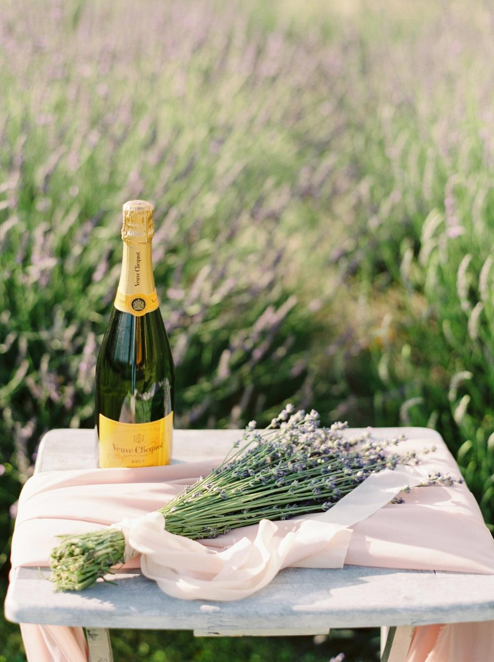 Lavender Fields | Kelowna Wedding and elopement photographer | Veuve Champagne | Justine Milton Photography