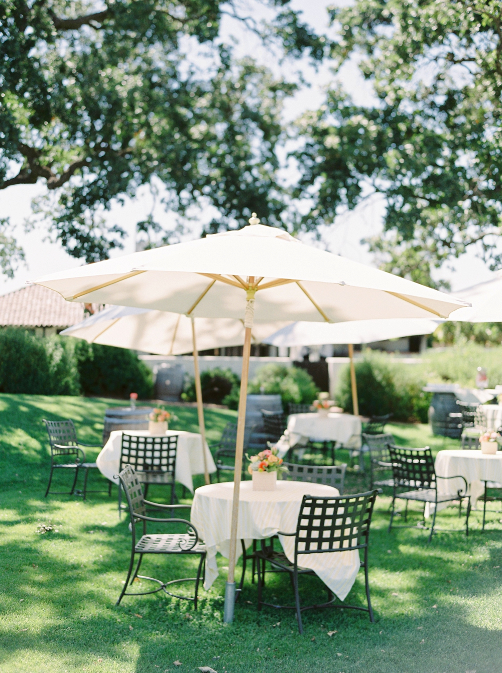 California Gainey Vineyard Wedding Welcome Reception | spring summer wedding decor