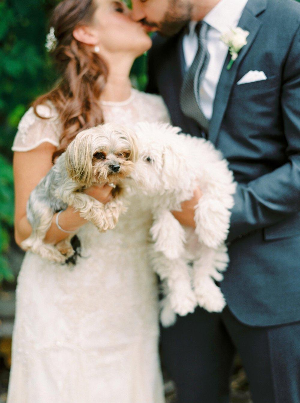 Calgary wedding photographers | fine art film | Justine Milton Photography | wedding inspiration | wedding dress | bride and groom portraits | dog