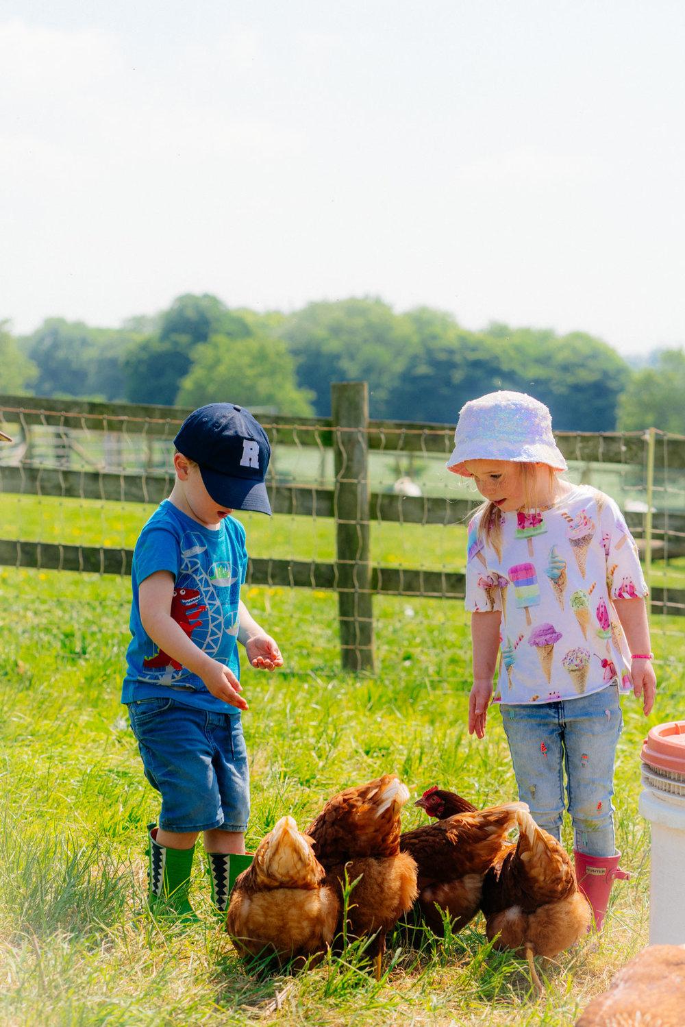 warleigh-lodge-farm-grosvenor-2018-05-22---305-305.jpg