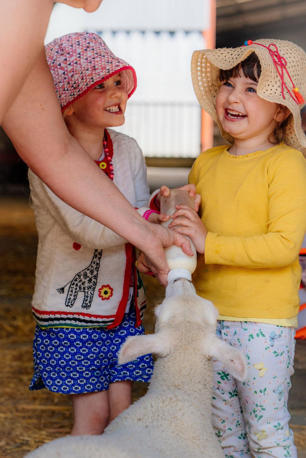 warleigh-lodge-farm-shirehampton-2018-05-23---128-128.jpg