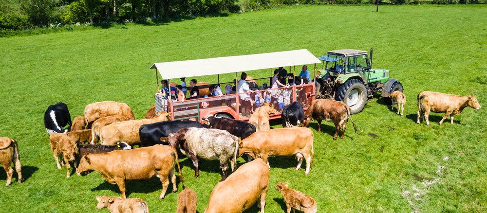 warleigh-lodge-farm-grosvenor-2018-05-22---131-131.jpg