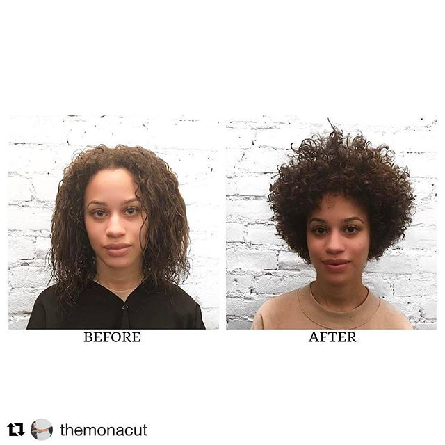 🌼 @themonacut ・・・ She came in with a bun and unwashed hair so I couldn't see what was happening to her hair. I precut about 5 inches off prior to the before photo, I re consulted with her after we washed and dried her so I can see and evaluate her hair. She made the right decision by doing a big chop although she was very nervous. She looks fantastic! Oh My. Curls by Joana. Cut by Me.