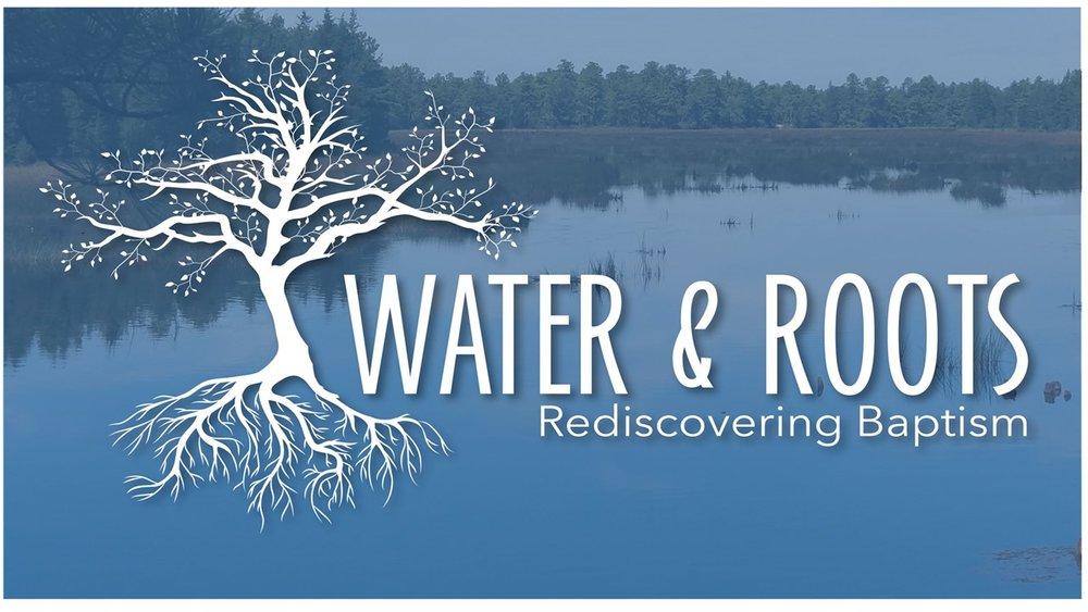 Water & Roots.jpg