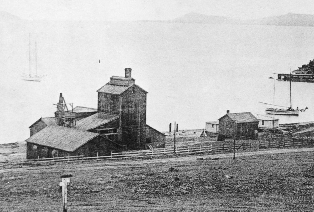 The imposing structure on Whaler's Cove in 1882 is the Saucelito Smelting Works.