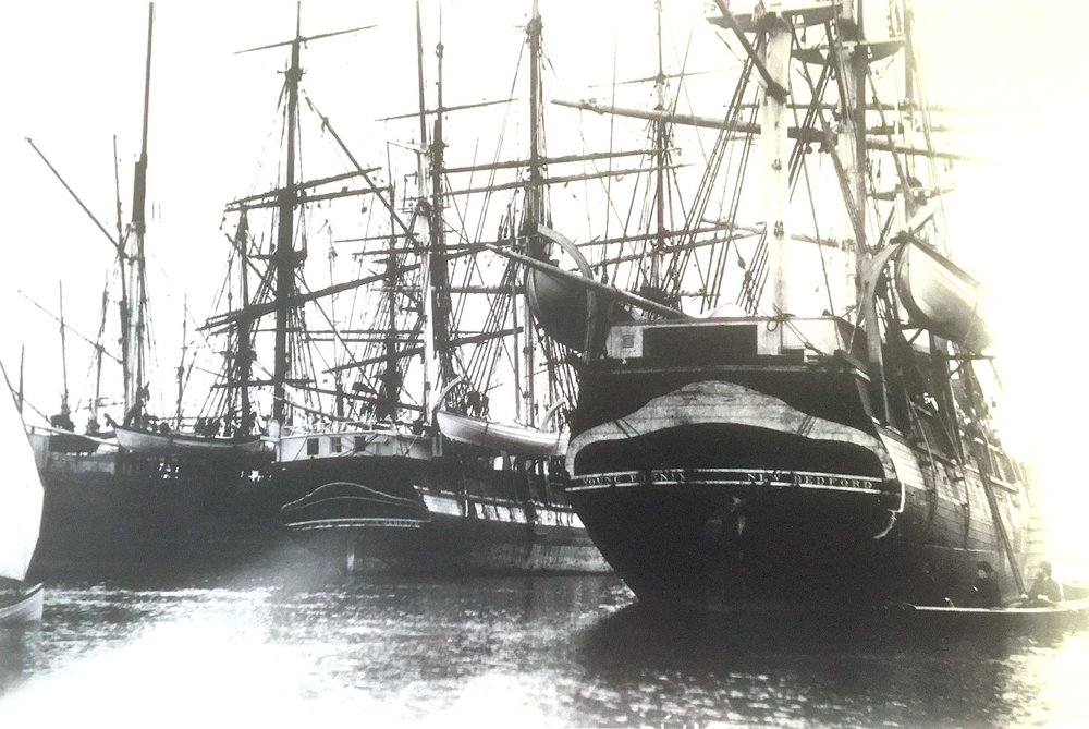 Whaling ships in Sausalito's protected cove.     Photo from National Maritime Museum of San Francisco