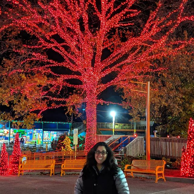 The @sesameplace Christmas celebration is insanely Instagrammable. And to think I used to go to bars on Thanksgiving Eve! Instead, I rode Oscar's Wacky Taxi three times and let Andy take the kids on all the spinny rides (haven't been able to handle them since I've had kids). And we met all the best monsters to celebrate Lydia's seventh birthday. Thanks #sesameplace #sesamestreet #oscarswackytaxi #pixel3