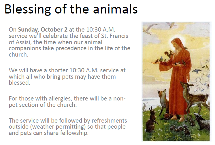 Blessing of the animals.png