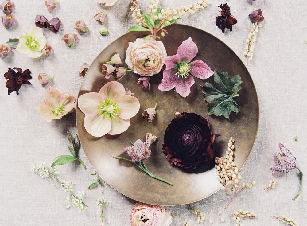 All Floral Images-0183.jpg