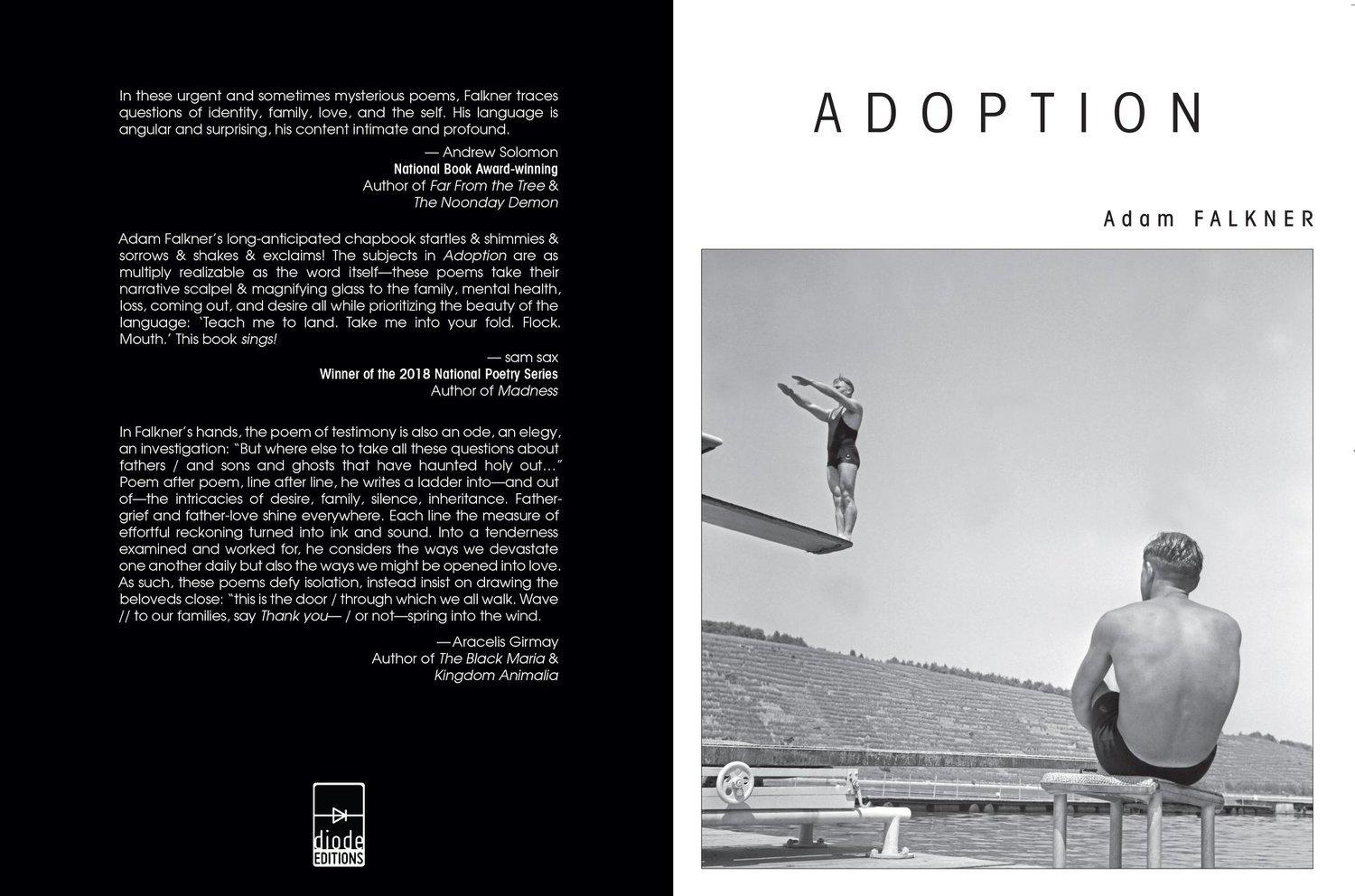 Poems About Adoption 7