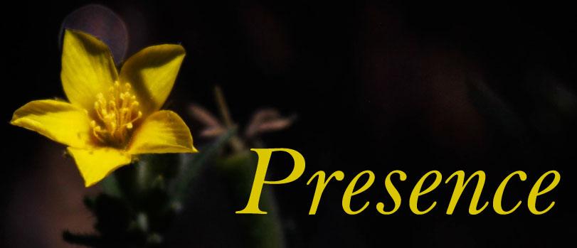 may---presence.jpg