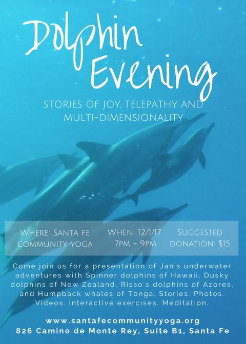 Dolphin Evening Santa Fe.jpg