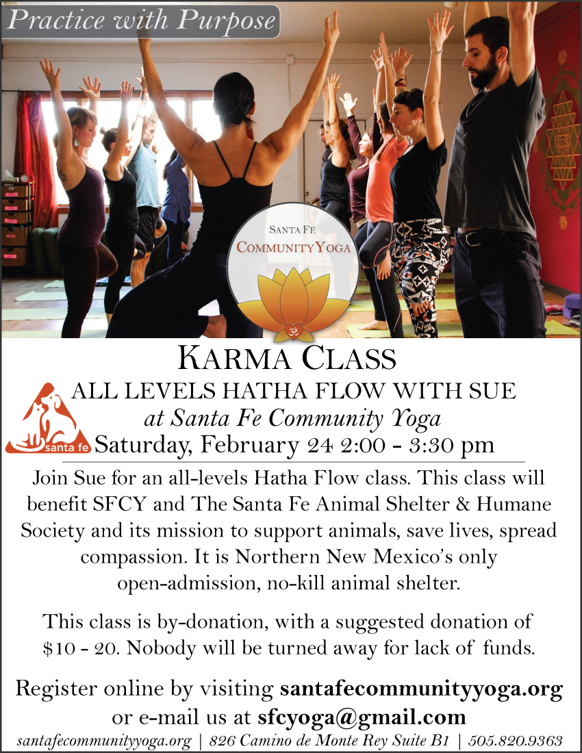 Karma-Class---February-Animal-Shelter.jpg