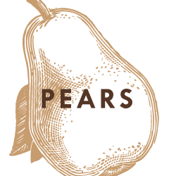 Bear Mountain Orchards Pears