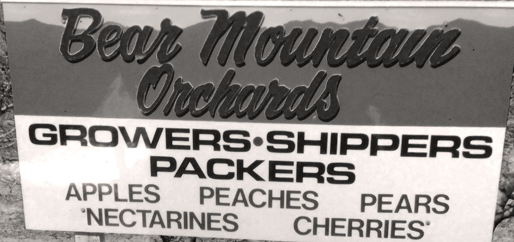 Original Bear Mountain Orchards Signage