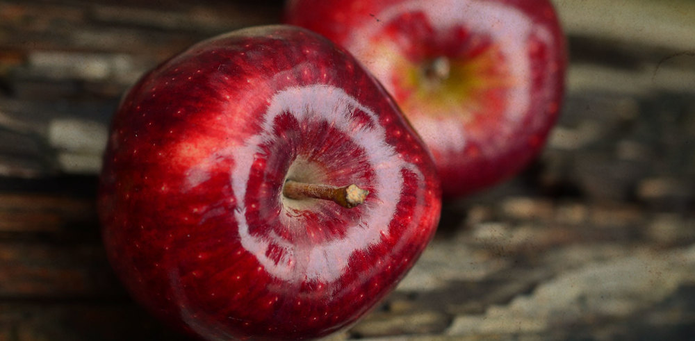 Bear Mountain Orchard Red Apples