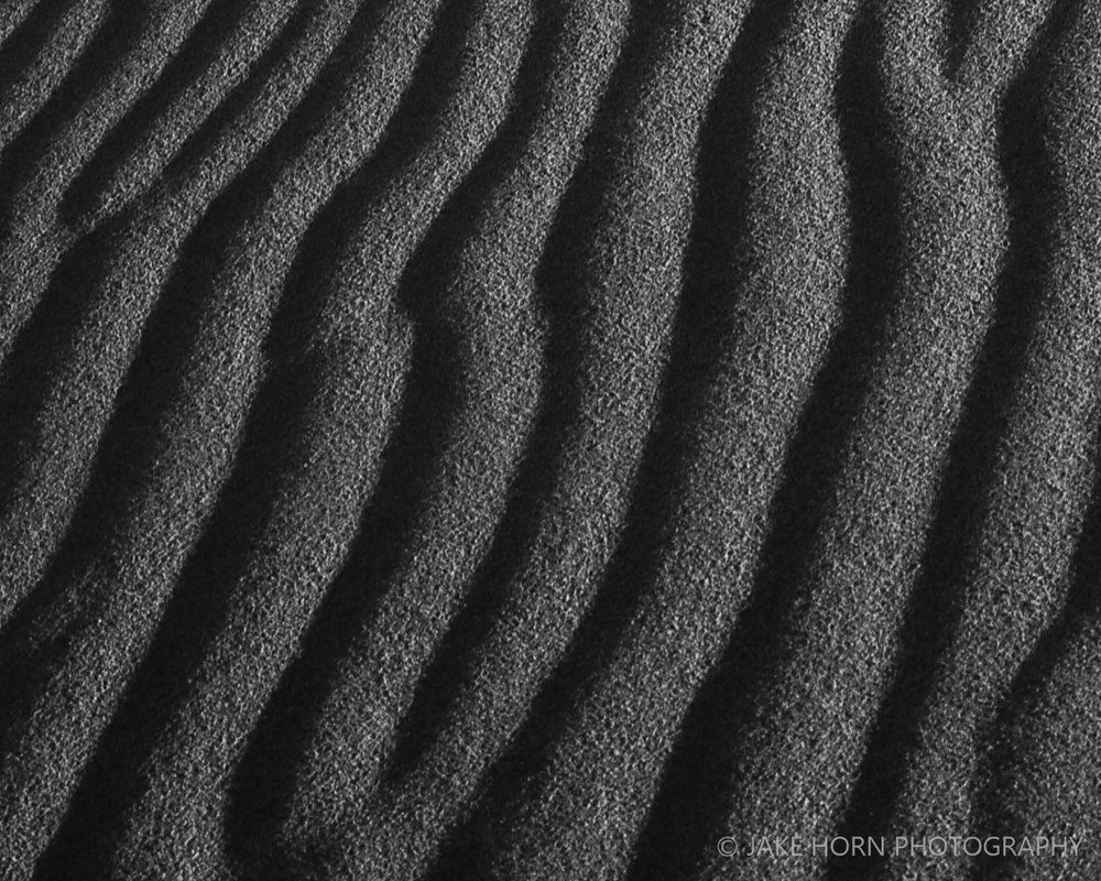 20151126_dunes_021-1-2.jpg