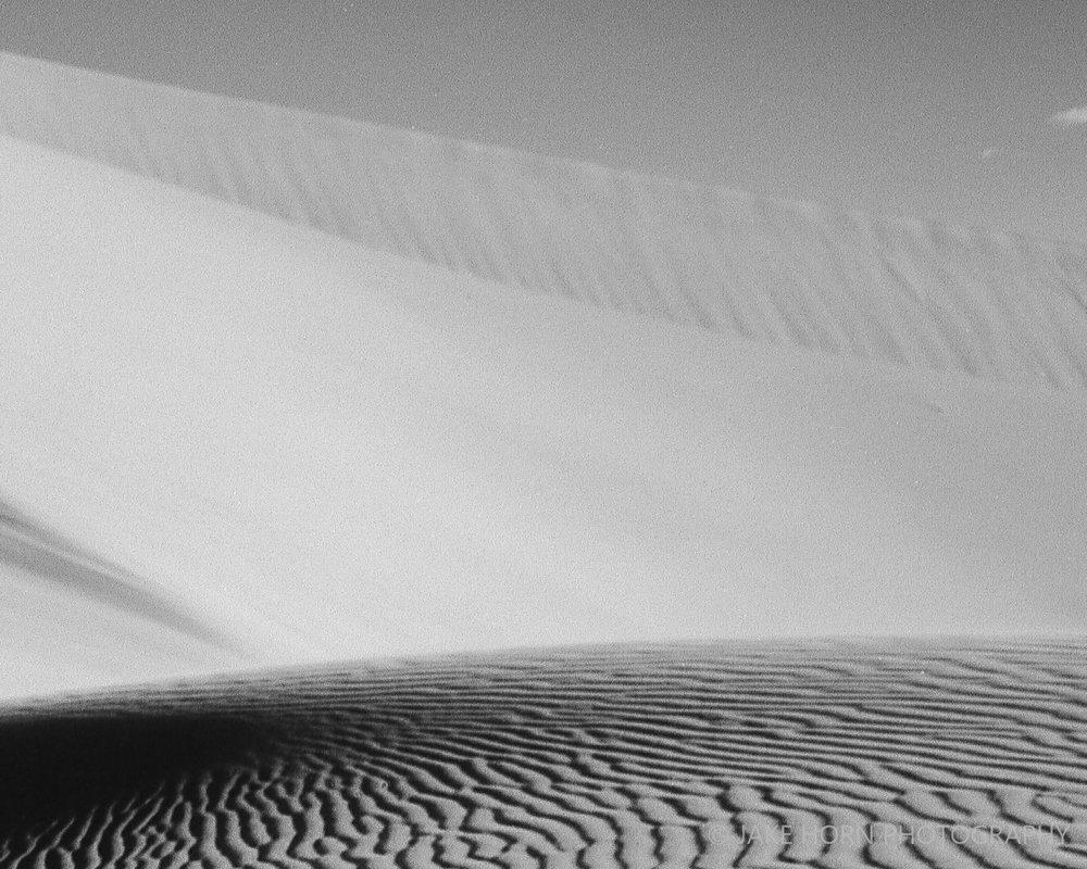 20151126_dunes_021-1-3.jpg