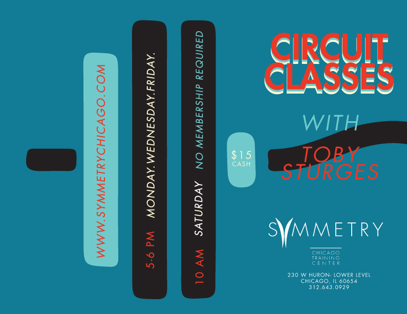 Circuit classes at symmetry chicago