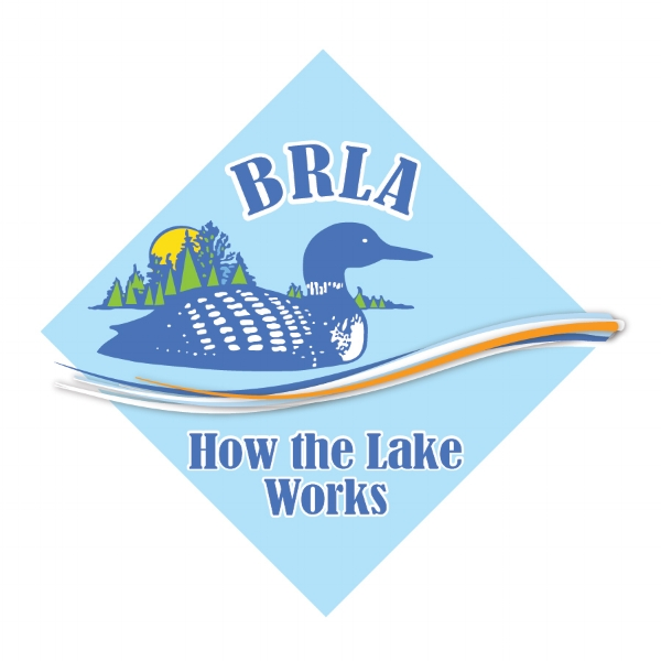 For previous articles, see our How the Lake Works main page.