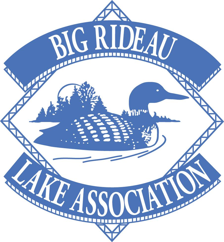 BRLA Logo Blue.jpg