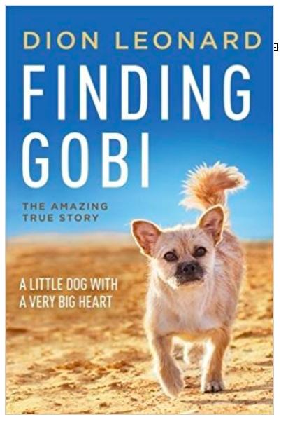 Finding Gobi.png